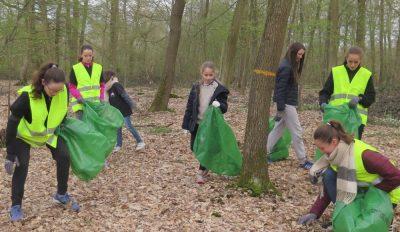 Opération Forêt propre